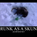 Drunk as a skunk2