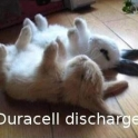 Duracell Discharge