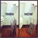 Evolution of bathroom