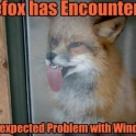 FireFox Has Encountered...