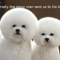 Frosty the Snow Man Sent Us To His Barber