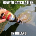 How to catch a fish in Ireland