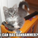I can has Banhammer