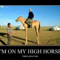 Im On My High Horse2