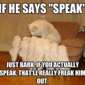 Just bark do not talk human