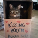 Kissing Booth but no tongues please