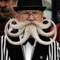 Octopus beards