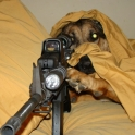 Sniper Dog can see you