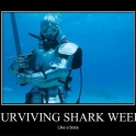 Surviving Shark Week Like A Boss2