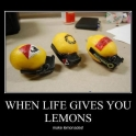 When Life Gives You Lemons2