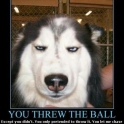 You Threw The Ball2