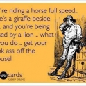 Youre riding a horse full speed....
