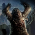 ZombieWookiee
