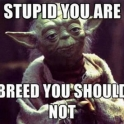 breed you should not