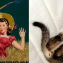 cats that look like pin up girls 15