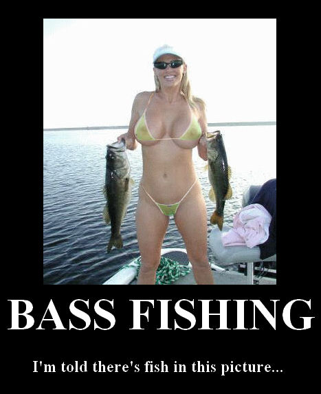bass fishing there is suppose to fish in this picture
