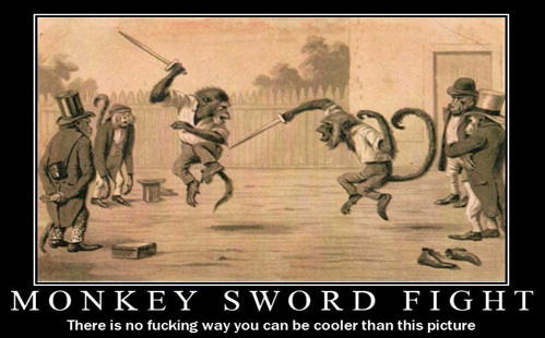 Monkey fight with swords