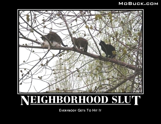 neighborhood slut